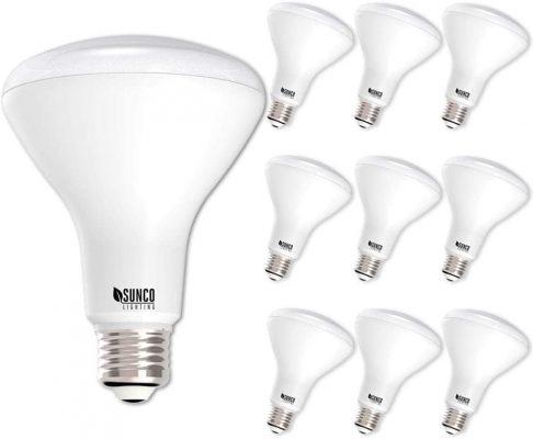Sunco Indoor LED Flood Light