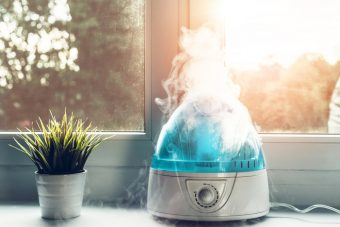 The 10 Best Home Humidifiers to Buy In 2020