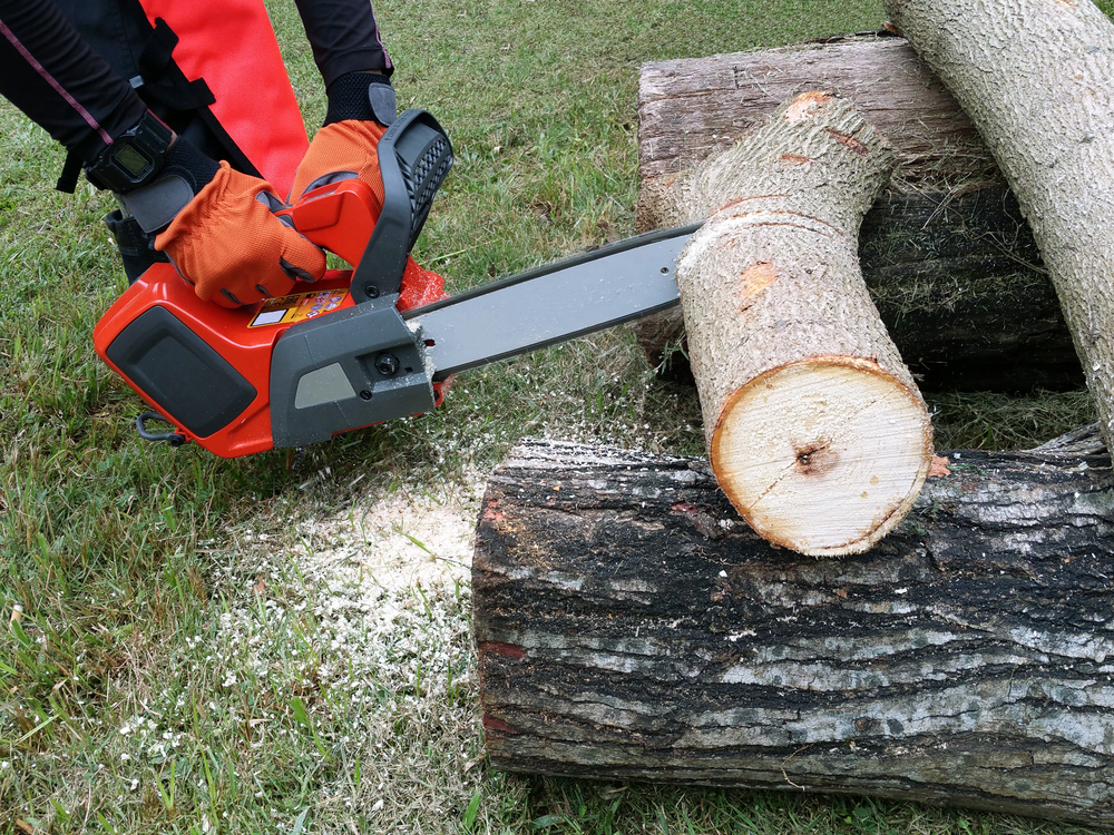 person using chainsaw to cut tree trunk