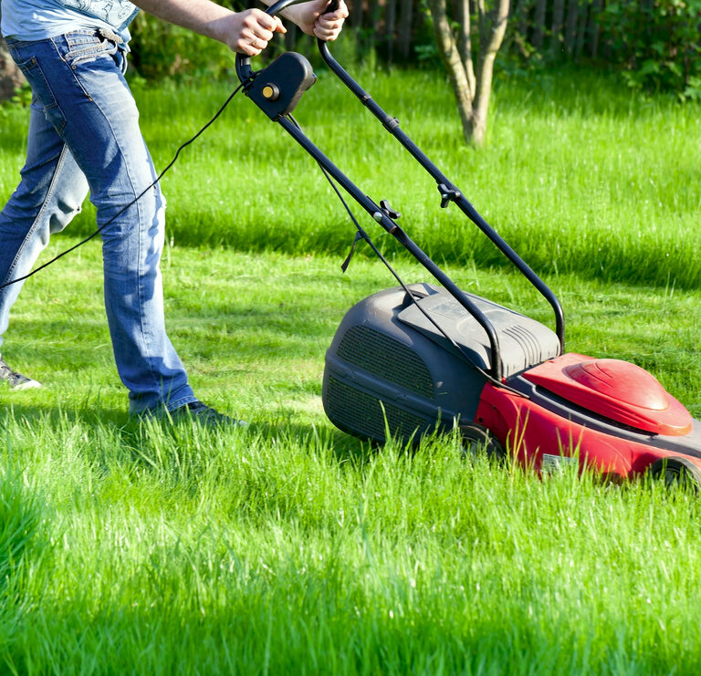The 9 Best Electric Lawn Mowers to Buy 2021