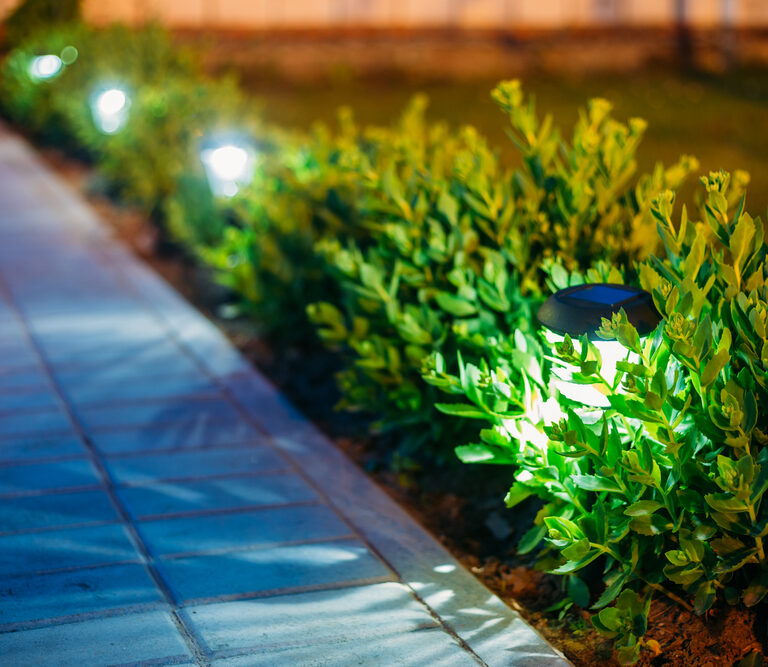 The 10 Best Outdoor Solar Lights to Make Your Garden Shine