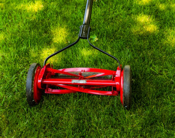 The 10 Best Reel Lawn Mowers to Buy 2021