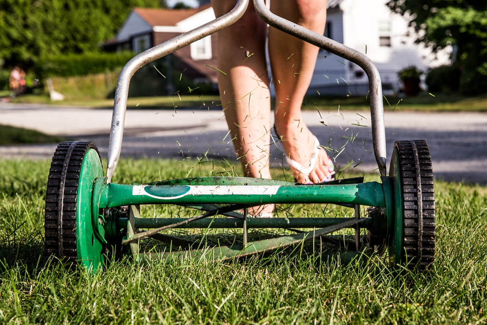 person using reel mower