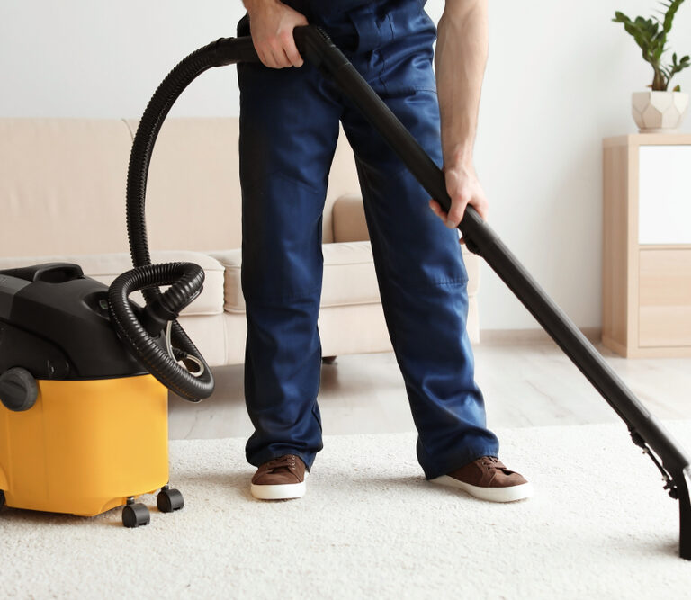 The 10 Best Wet/Dry Shop Vacs to Buy 2021