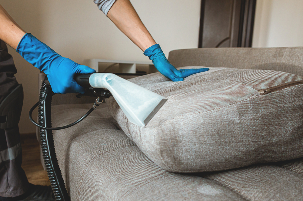 Shop vac being used on couch cushions