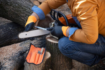 The 10 Best Chainsaw Sharpeners: Stay Sharp Out There