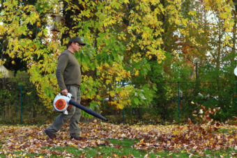Clear All Corners of Your Lawn: Best Cordless Leaf Blowers
