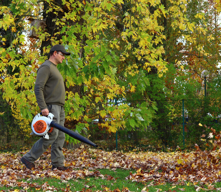 The 10 Best Cordless Leaf Blowers to Buy in 2021