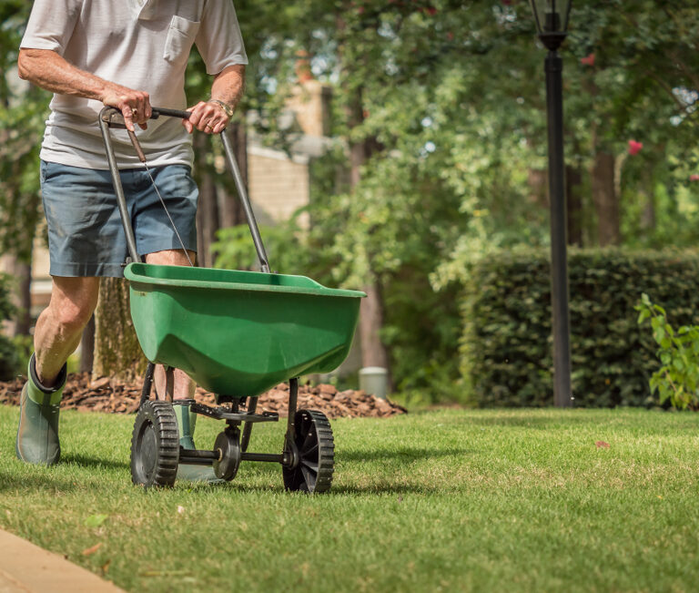 Nourish Your Lawn With the Best Fertilizer Spreaders for Lawns