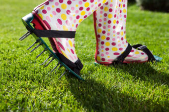 Let Your Lawn Breathe With the 10 Best Lawn Aerators