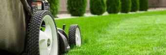 The 10 Best Self-Propelled Lawn Mowers for Every Lawn