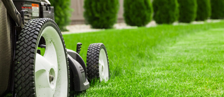 The 10 Best Self-Propelled Lawn Mowers 2021