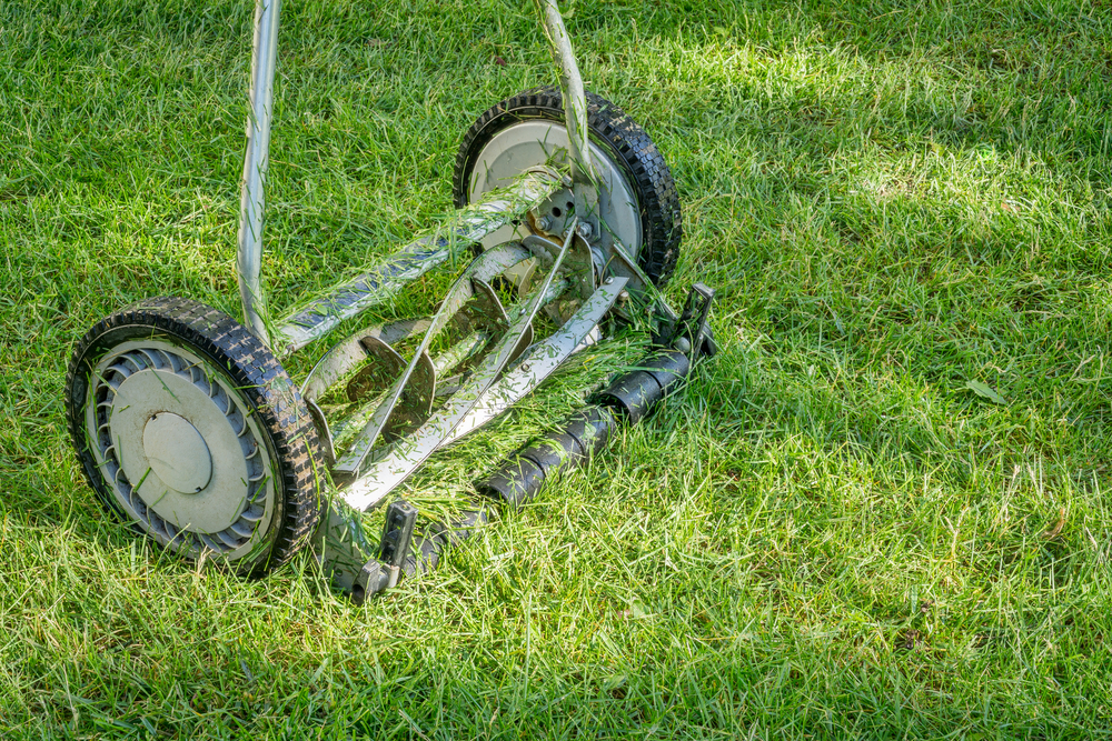 close up of reel lawn mower covered in grass