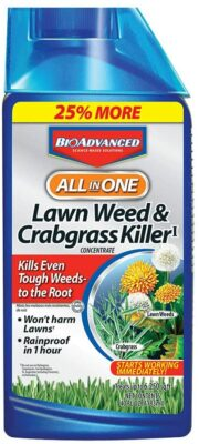 BioAdvanced Lawn Weed and Crabgrass Killer