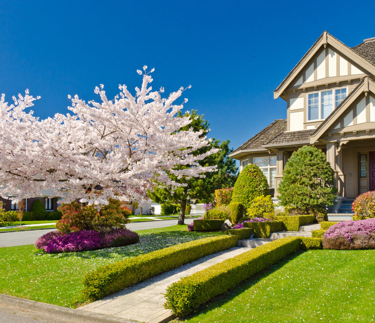 Landscape Your Front Yard and Make It Functional: Step-by-Step Guide