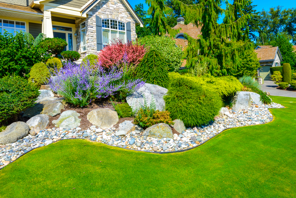 landscaped front yard with plants