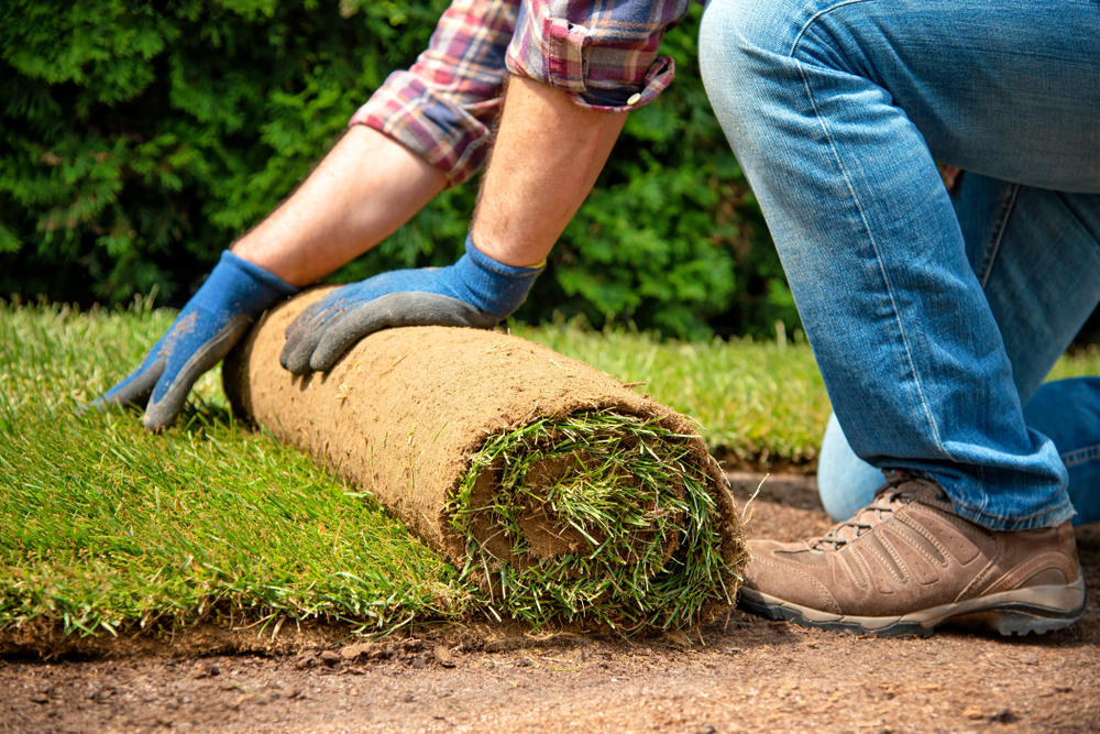 man wearing gloves laying a roll of turf on the ground