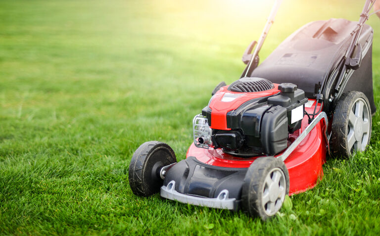 The Smell of Grass in the Morning: Best Lawnmowers for Small Yards