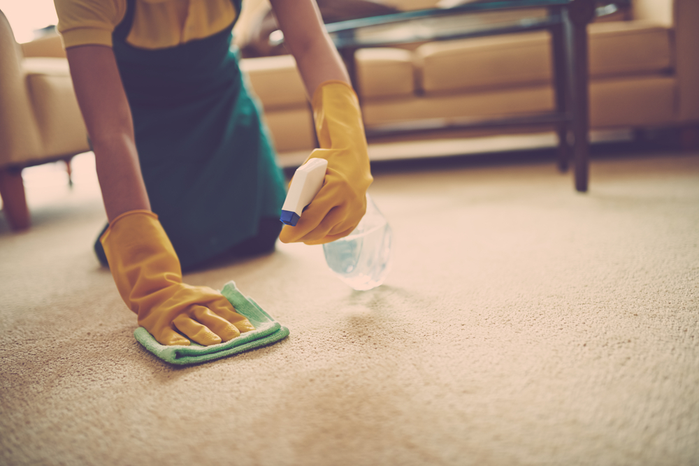 A woman removing stains from carpet