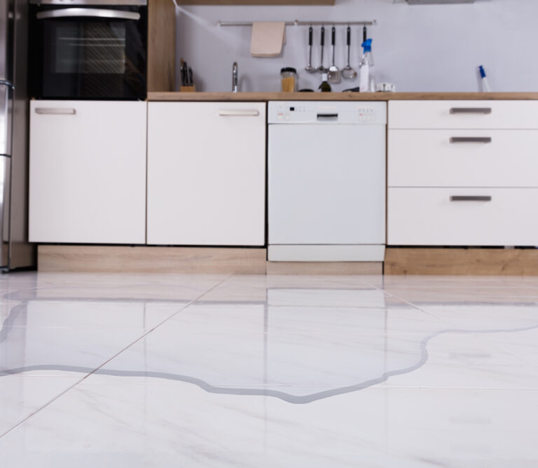 5 Common Causes of Dishwasher Leaking and How to Fix Them