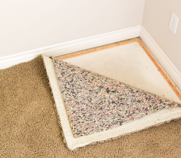 How to Get Mold out of Carpet: A Simple Guide