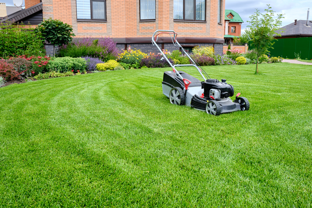 lawnmower on lush green yard