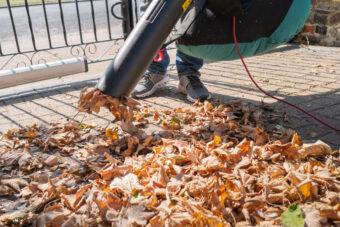 The 9 Best Leaf Mulchers 2021