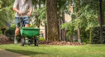 Learn How to Fertilize Your Lawn